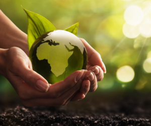 Read more about the article Reasons to go paperless #1   –   Helping the environment